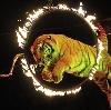 Цирки в Знаменске